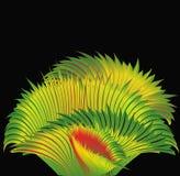 Grama tropica da arte. Imagem de Stock