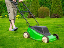 A grama verde é segada pela segadeira de gramado Fotos de Stock
