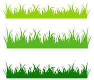 Grama verde Imagem de Stock