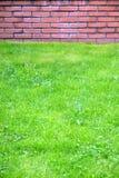 Grama verde antes da parede de tijolo vermelho no parque da cidade na opinião dianteira de dia de mola fotos de stock royalty free