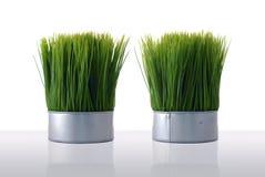 Grama verde artificial Fotografia de Stock