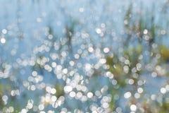 Grama verde borrada, luz solar e água no fundo do campo Fotografia de Stock Royalty Free