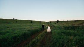 A grama verde cerca newlwyeds que anda em conjunto Fotografia de Stock