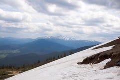 Grama verde com céu azul e montanha da neve Imagem de Stock Royalty Free