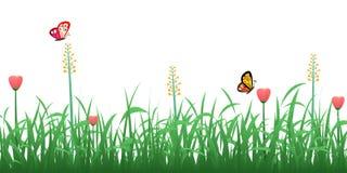 Grama verde com flores e borboletas Fotografia de Stock