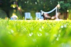 Grama verde com gotas da água e fundo verde do bokeh na jarda com as cadeiras da piscina e de plataforma para amigos no partido d imagens de stock