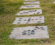 Grama verde com passagem de pedra Foto de Stock