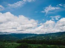 A grama verde das montanhas do verão e o céu azul ajardinam Imagem de Stock