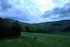 Grama verde de céu azul imagem de stock royalty free