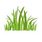 Grama verde de Eco ilustração royalty free