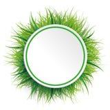 Grama verde do círculo ilustração do vetor
