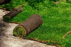 Grama verde do gramado nos rolos fotografia de stock