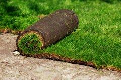 Grama verde do gramado nos rolos fotos de stock royalty free