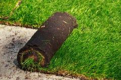 Grama verde do gramado nos rolos foto de stock royalty free