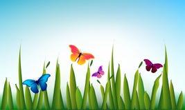 Grama verde do vetor com as borboletas Imagens de Stock
