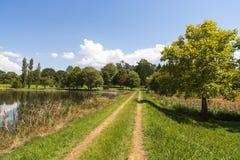 Grama verde e árvores ao lado da água Foto de Stock Royalty Free