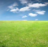 Grama verde e céu Foto de Stock Royalty Free