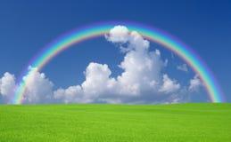Grama verde e céu Fotos de Stock