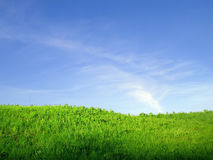 Grama verde e céu azul imagens de stock