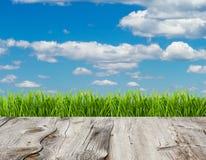 Grama verde e céu azul no fundo de madeira do assoalho fotografia de stock
