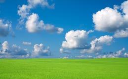 Grama verde e céu com nuvens. Fotografia de Stock