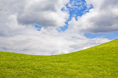 Grama verde e céu nebuloso azul Fotografia de Stock