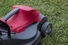 Grama verde e cortador de grama Imagem de Stock