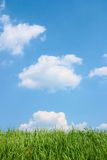 Grama verde e céu nebuloso azul bonito. Foto de Stock Royalty Free