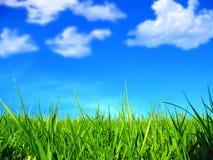 Grama verde e nuvens Foto de Stock Royalty Free