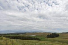 Grama verde e nuvens brancas em Drakensberg Foto de Stock