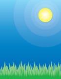 Grama verde em um dia de verão Ilustração do Vetor