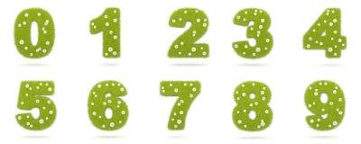 Grama verde natural com dígitos dos camolines de 0 a 9 Imagens de Stock