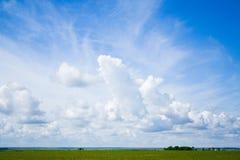 Grama verde, o céu azul e nuvens brancas Imagens de Stock
