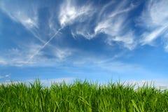 Grama verde sob o céu com nuvens fleecy imagens de stock