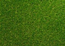 A grama verde textured o fundo para o esporte do golfe e o esporte do futebol Fotos de Stock Royalty Free