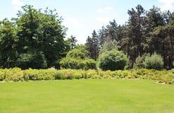 Gramado bonito no jardim do verão Fotografia de Stock