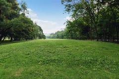 Gramado da paisagem no parque Imagens de Stock Royalty Free
