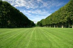 Gramado Manicured - grande campo verde imagem de stock