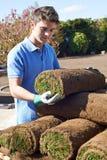 Gramado novo de Laying Turf On do jardineiro de paisagem foto de stock royalty free