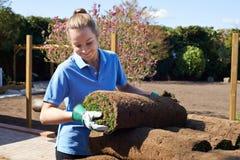 Gramado novo fêmea de Laying Turf For do jardineiro de paisagem imagem de stock royalty free
