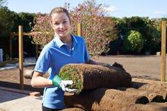 Gramado novo fêmea de Laying Turf For do jardineiro de paisagem imagens de stock royalty free