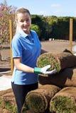 Gramado novo fêmea de Laying Turf On do jardineiro de paisagem fotos de stock royalty free