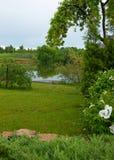 Gramado perto do lago Fotografia de Stock
