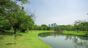Gramado verde de um parque espaçoso da cidade imagem de stock