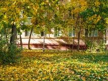 gramado verde folhas caídas cobertas na corte urbana imagem de stock