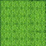 Gramado verde, grama A textura de um gramado verde Fotografia de Stock Royalty Free