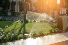 Gramados molhando automáticos no jardim no verão, contra o por do sol imagem de stock royalty free