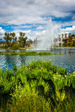 Gramas e uma fonte em Echo Park Lake imagem de stock royalty free