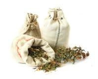 Gramas medicinais, ervais, gramas para a bruxaria Fotos de Stock Royalty Free