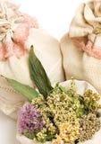 Gramas medicinais, herbals Fotos de Stock